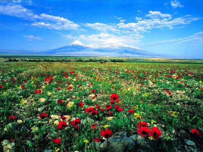 Tour Armenia Classica