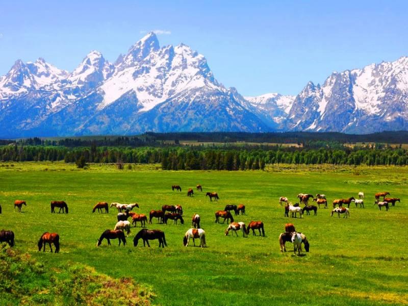 Tour Cowboys e Indiani