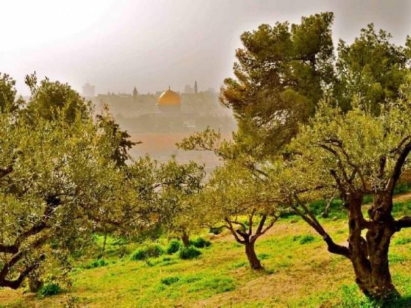 Minitour a Gerusalemme