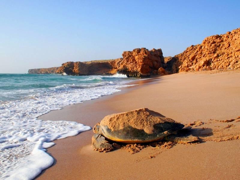 Tour Magia dell'Oman